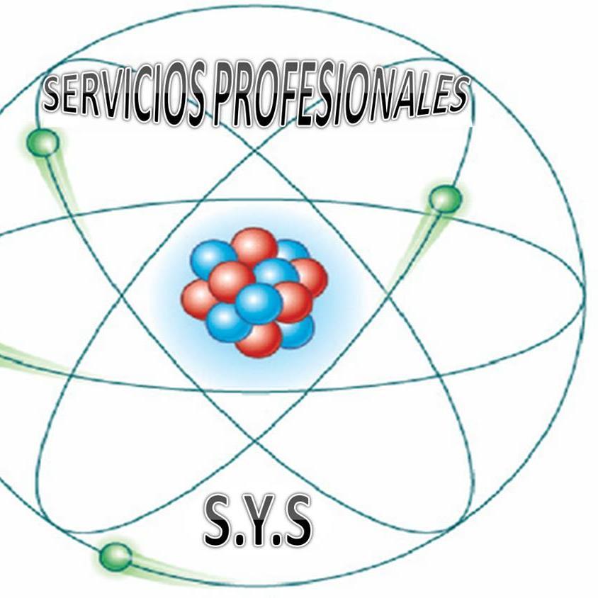 Servicios ProfesionalesSYS