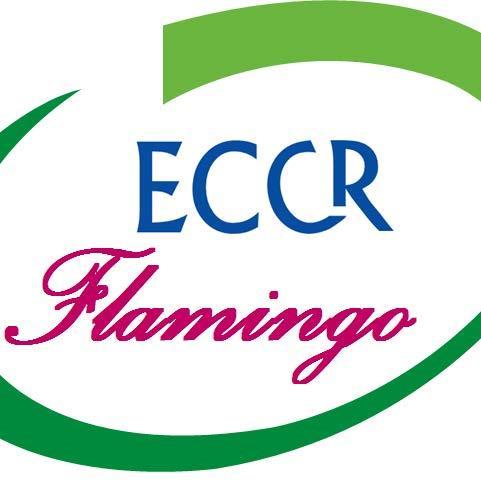 Eccr Flamingo S.A.